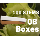 Lemonade 100 stems QB box