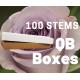 Ocean Song 100 stems QB box