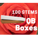 Nina 100 stems QB box