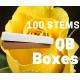 Brighton 100 stems QB box
