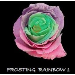 Frosting Rainbow 1